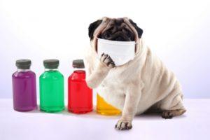 コロナウイルスマスク着用 割れる説明