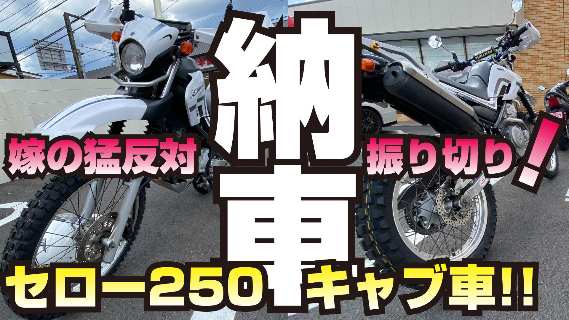 """<span class=""""title"""">セロー250購入(中古)</span>"""